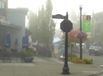 It was misty on Snoqualmie Ridge during set-up