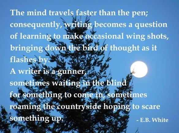 eb-white-writing