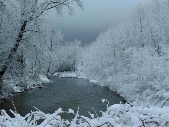 trees-heavy-with-snow-by-sheri-j-kennedy-jan-17